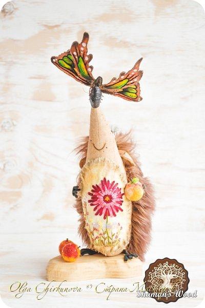 В моем лесу Шамана не только мальчишки-ежики живут, но и красавицы игольчатые!  Ежиха Брунгильда живет в лесу Шамана в роще Поющих раков. Она любит чай с чабрецом и варенье из апельсинов, которое привозит Морошич из дальних путешествий. Бруня дружит с прекрасной Лето и всегда ждет ее приезда. А бабочка…это подарок от доброй подруги, чтобы всегда в доме был зеленый сезон. Брунгильда будит бабочку зимними вечерами и просит рассказывать волшебные сны! фото 1