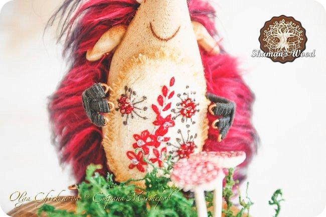 В моем лесу Шамана не только мальчишки-ежики живут, но и красавицы игольчатые!  Ежиха Брунгильда живет в лесу Шамана в роще Поющих раков. Она любит чай с чабрецом и варенье из апельсинов, которое привозит Морошич из дальних путешествий. Бруня дружит с прекрасной Лето и всегда ждет ее приезда. А бабочка…это подарок от доброй подруги, чтобы всегда в доме был зеленый сезон. Брунгильда будит бабочку зимними вечерами и просит рассказывать волшебные сны! фото 43