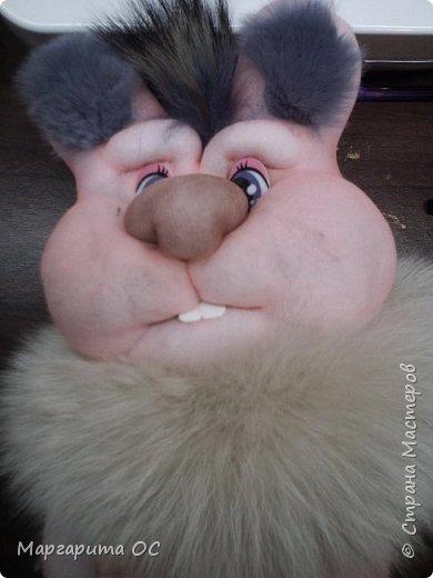 Заяц, который любит давать советы фото 1