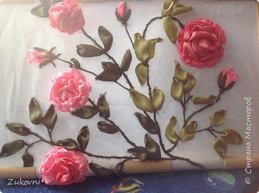 Ветка розы фото 2