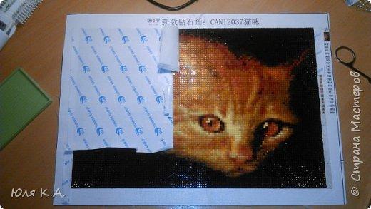 Никогда не заказывала товары в Китае, но когда увидела эту кошку, то мимо пройти не смогла. Влюбилась раз и навсегда!!! Какой у неё взгляд... Про алмазную вышивку слышала, но никогда не пробовала.  В целом могу сказать, что не пожалела! Размер взяла самый маленький - 20х30 см (хотя сейчас думаю, что надо было брать самый большой). Холст с клеевой основной и нанесенной картинкой с номерами (как при обычной вышивке, когда на канве уже проставлены номера). Каждому номеру соответствует свой цвет камушков. В комплекте были: пинцет, зеленая прямоугольная тарелочка, маленькие зип-пакеты и бумажка с инструкцией. Цвета были все, достаточно насыщенные. Алмазики прямоугольные, брака мало.  Пока посылка ехала, я прочитала много информации по алмазной вышивке. На каком-то форуме девочки писали, что лучше начинать с середины. Уж не помню по какой причине, но решила последовать совету (ведь при обычной вышивке крестиком тоже начинают с середины). фото 17