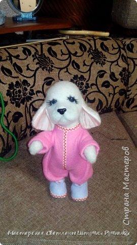 """Здравствуй моя любимая страна, а я к вам с новой игрухой. Вот такая собака-бибизяка у меня сегодня родилась. Вернее собаку я не планировала, а мечтала о мишутке. Но у меня сегодня как в песне у Пугочевой """" Сделать хотел грозу, а получил козу. Розовую козу ......."""" а я сделала собачку Сонечки почему я ещё так назвала видно будет дальше из фоток. фото 1"""