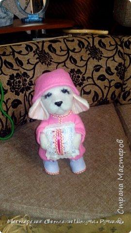 """Здравствуй моя любимая страна, а я к вам с новой игрухой. Вот такая собака-бибизяка у меня сегодня родилась. Вернее собаку я не планировала, а мечтала о мишутке. Но у меня сегодня как в песне у Пугочевой """" Сделать хотел грозу, а получил козу. Розовую козу ......."""" а я сделала собачку Сонечки почему я ещё так назвала видно будет дальше из фоток. фото 3"""