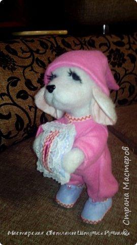 """Здравствуй моя любимая страна, а я к вам с новой игрухой. Вот такая собака-бибизяка у меня сегодня родилась. Вернее собаку я не планировала, а мечтала о мишутке. Но у меня сегодня как в песне у Пугочевой """" Сделать хотел грозу, а получил козу. Розовую козу ......."""" а я сделала собачку Сонечки почему я ещё так назвала видно будет дальше из фоток. фото 5"""