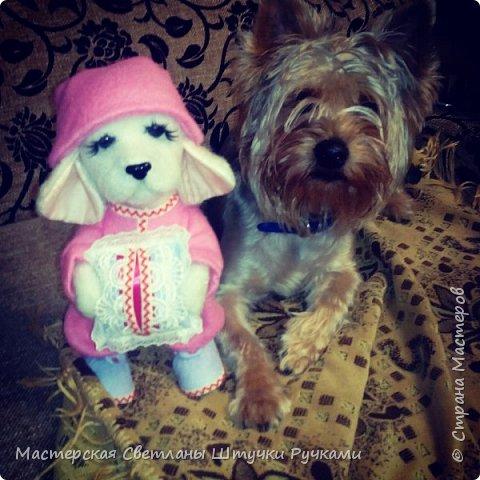 """Здравствуй моя любимая страна, а я к вам с новой игрухой. Вот такая собака-бибизяка у меня сегодня родилась. Вернее собаку я не планировала, а мечтала о мишутке. Но у меня сегодня как в песне у Пугочевой """" Сделать хотел грозу, а получил козу. Розовую козу ......."""" а я сделала собачку Сонечки почему я ещё так назвала видно будет дальше из фоток. фото 7"""