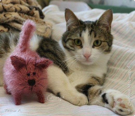 Котенок Клубочек фото 1