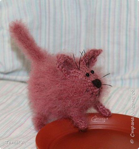Котенок Клубочек фото 4