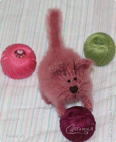 Котенок Клубочек фото 5