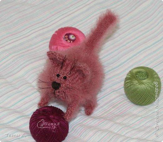 Котенок Клубочек фото 7