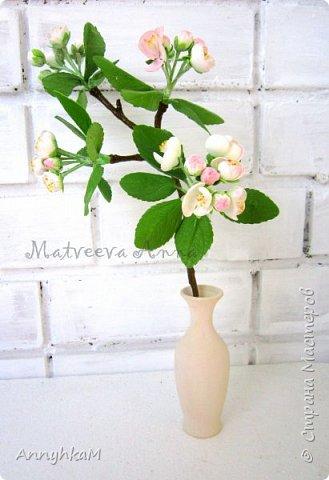 Здравствуйте, дорогие мастера и мастерицы. Весна, сады цветут и я вырастила веточку яблони из иранского фоамирана. фото 1