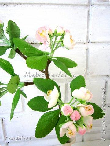 Здравствуйте, дорогие мастера и мастерицы. Весна, сады цветут и я вырастила веточку яблони из иранского фоамирана. фото 2