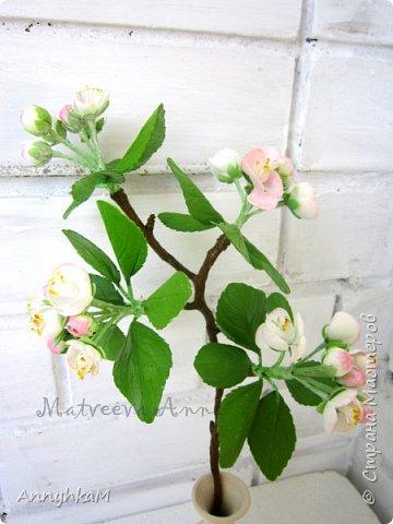 Здравствуйте, дорогие мастера и мастерицы. Весна, сады цветут и я вырастила веточку яблони из иранского фоамирана. фото 4