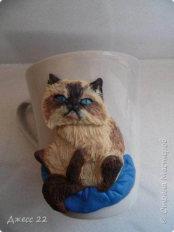 Кот по кличке Бонапарт. Можно наверно проще его Высочество))) фото 1