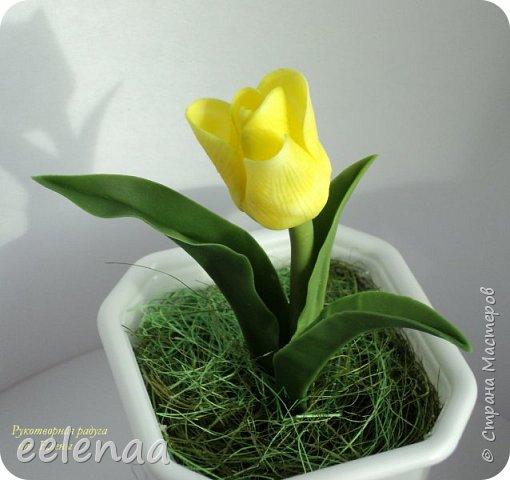 Тюльпаны.  (керамическая флористика). фото 2