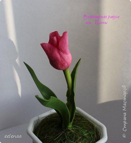 Тюльпаны.  (керамическая флористика). фото 3