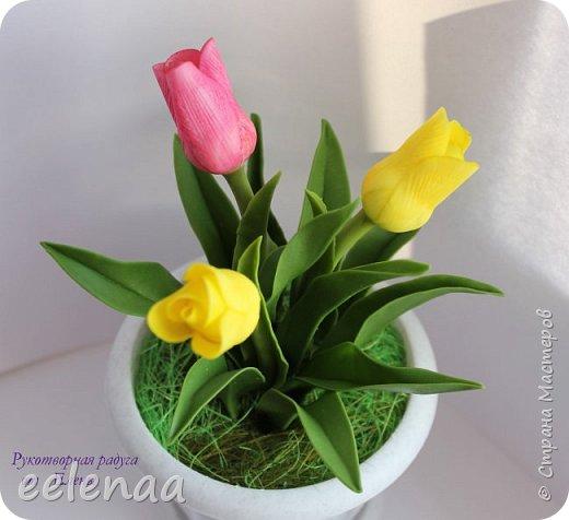 Тюльпаны.  (керамическая флористика). фото 1