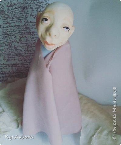 Всем Привет!Показываю куколку после Мк Оли Егупец. Это бабочка Милица Бражник. фото 7