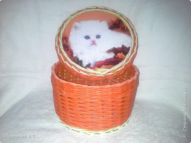 Все плетёнки с кошечками для девчушек заказывали, смотрим.. фото 25