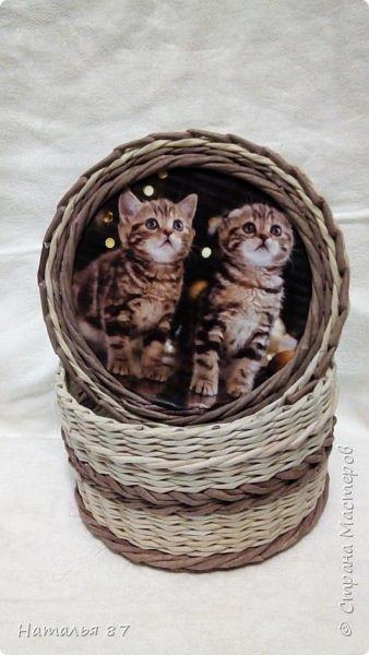 Все плетёнки с кошечками для девчушек заказывали, смотрим.. фото 2
