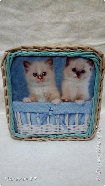 Все плетёнки с кошечками для девчушек заказывали, смотрим.. фото 8