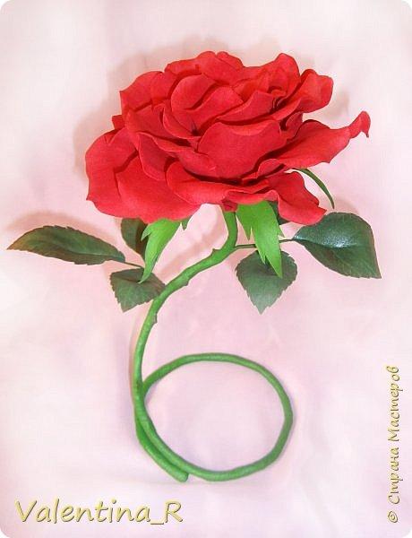 Вот теперь и у меня есть настольная роза. Высота получилась 29 см, диаметр цветка - 16 см. фото 1