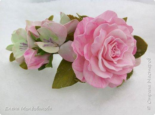 Выпавший в апреле снег явился хорошим фоном для моих роз фото 1