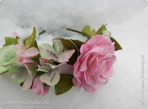 Выпавший в апреле снег явился хорошим фоном для моих роз фото 2