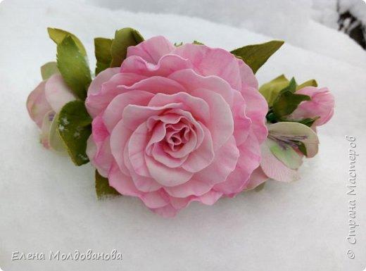 Выпавший в апреле снег явился хорошим фоном для моих роз фото 5