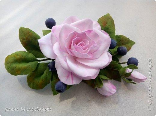 Роза с черникой фото 1