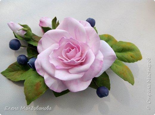 Роза с черникой фото 2