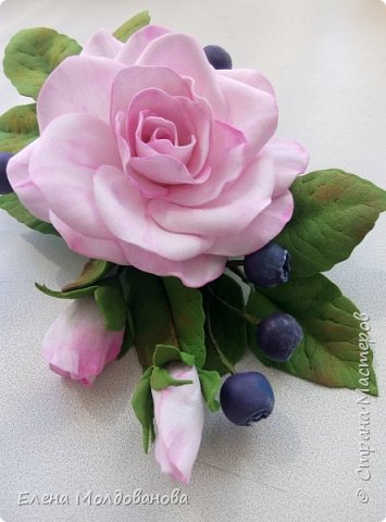 Роза с черникой фото 4