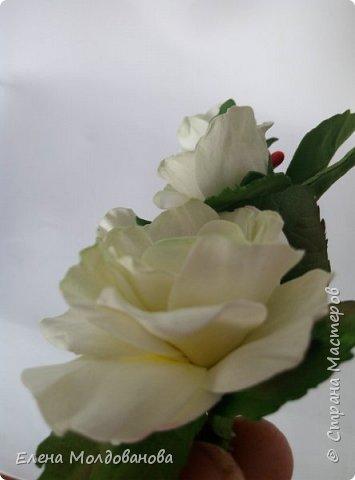 Розы на ленте фото 7