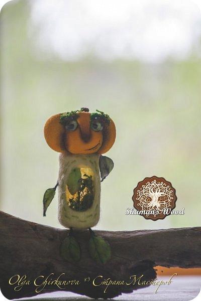 Кроме миллиона ежей, в лесу шамана живет много удивительных созданий!  Стеклопуз Солнечник —  хранитель надежды! фото 5