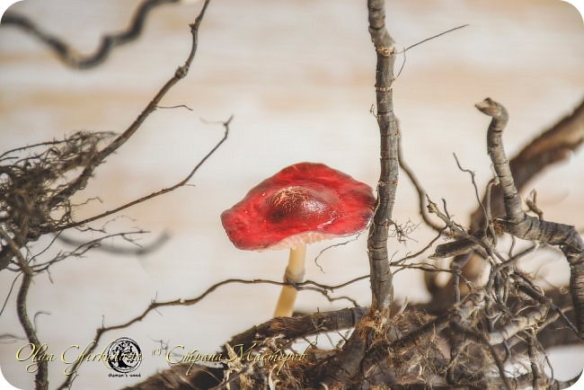 Кроме миллиона ежей, в лесу шамана живет много удивительных созданий!  Стеклопуз Солнечник —  хранитель надежды! фото 29