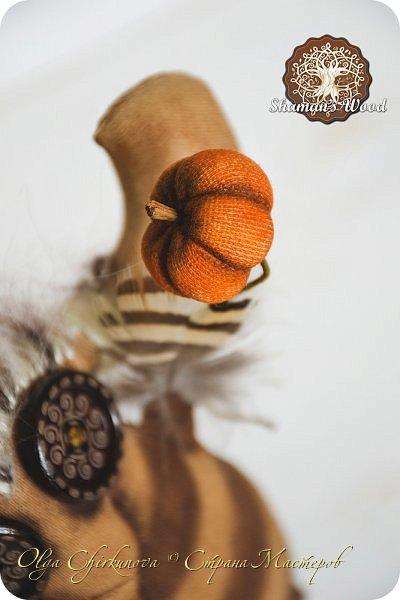 Кроме миллиона ежей, в лесу шамана живет много удивительных созданий!  Стеклопуз Солнечник —  хранитель надежды! фото 21