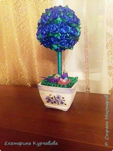 Уж очень мне нравиться синий цвет. Жаль, что фотографии не качественные и не могут передать насыщенный цвет этих роз( Птичек я покупала готовых, а вот их отпрысков лепила сама) фото 1