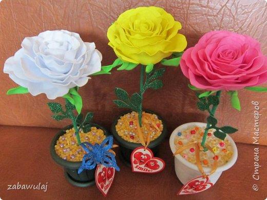 Розы:-)  фото 5