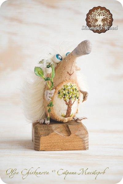 Юлий! Этот ёжик, словно частичка лета! Он любит зеленые листочки и солнечную погоду. Светлые иголочки, сопливый пятнистый носик, голубые глазки, очаровательная улыбка, лохматая челка и веснушки. На заплате вышито зеленое дерево — символ богатства и процветания. На голове венок, а в лапке посох волшебный с лотосом. Если ёжик возьмет что-нибудь в лапку, взятое приумножается. Такая у него магия! Однажды ежик Кеша попросил побольше яблок, а потом замучился собирать их в саду, да запихивать в погреб. фото 1