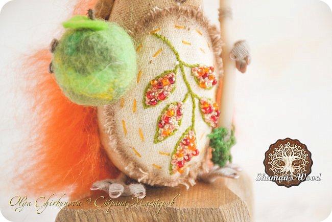 Юлий! Этот ёжик, словно частичка лета! Он любит зеленые листочки и солнечную погоду. Светлые иголочки, сопливый пятнистый носик, голубые глазки, очаровательная улыбка, лохматая челка и веснушки. На заплате вышито зеленое дерево — символ богатства и процветания. На голове венок, а в лапке посох волшебный с лотосом. Если ёжик возьмет что-нибудь в лапку, взятое приумножается. Такая у него магия! Однажды ежик Кеша попросил побольше яблок, а потом замучился собирать их в саду, да запихивать в погреб. фото 9
