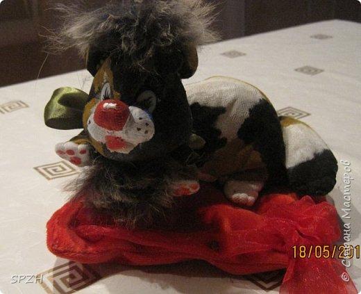 Вот такая зверушка))) фото 1