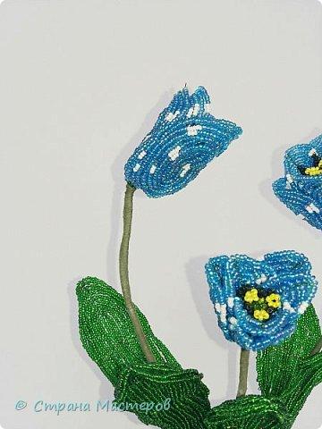 Тюльпаны сделаны по идеи Т.Е. Косововой , под руководством и автору мк Людмилы ( ЛюдмилаШ) на форуме Саната   1. композиция в сосуде   фото 2