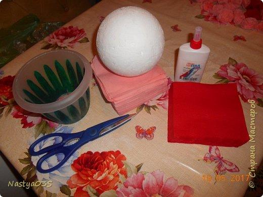 Для начала работы мы приготовим все материалы. Нам понадобится: салфетки, шар из пенопласта ( также можно его сделать из газеты), степлер, горшок, ножницы и клей ПВА. фото 1