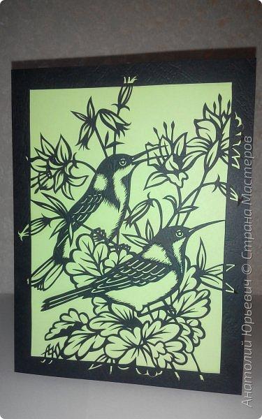 """Всем добрый день! Вашему вниманию новая открытка с птичками. - Восточный шилоклювый медосос (лат. Acanthorhynchus tenuirostris) — вид воробьинообразных птиц из семейства медососовых (Meliphagidae). - Встречается в восточной части Австралии. Питается нектаром множества растений, помимо нектара питается беспозвоночными - Эскиз для """"вырезалки"""" выполнен, изменён и доработан по цветной работе австралийской художницы Dtidre Hunt.  - Размер открытки 12х16см. фото 1"""