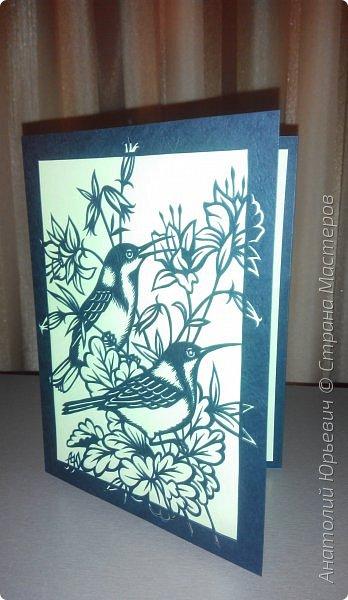 """Всем добрый день! Вашему вниманию новая открытка с птичками. - Восточный шилоклювый медосос (лат. Acanthorhynchus tenuirostris) — вид воробьинообразных птиц из семейства медососовых (Meliphagidae). - Встречается в восточной части Австралии. Питается нектаром множества растений, помимо нектара питается беспозвоночными - Эскиз для """"вырезалки"""" выполнен, изменён и доработан по цветной работе австралийской художницы Dtidre Hunt.  - Размер открытки 12х16см. фото 8"""