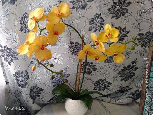 эту орхидею сделала для себя( а то сапожник без сапог)  фото 4