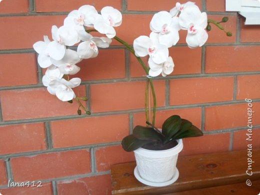 эту орхидею сделала для себя( а то сапожник без сапог)  фото 1