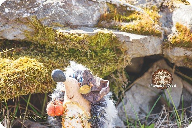 Красивые места повсюду:) Оказывается в 10 минутах от дома в заброшенном кинотеатре есть чудесная разваленная лестница со мхом... а рядом сказочное дерево! Но природа нас окружает и в тех же 10 минутах шикарные сопки, распадок... Было бы интересно посмотреть на места, которые меня вдохновляют? Хотя меня вся Камчатка заставляет внутренне дрожать от красоты. фото 6
