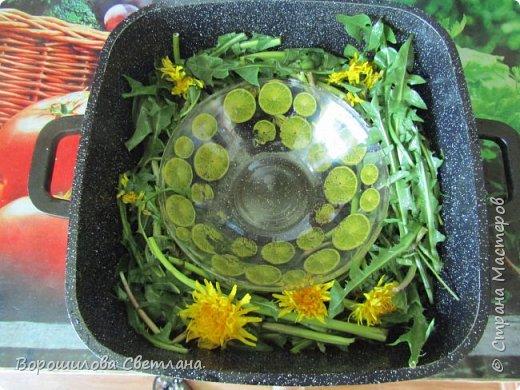 Наступила пора когда можно собирать всякие травки-цветочки и использовать их в домашней косметике.В этом МК покажу как я делаю цветочную воду,или по научному гидролат. Из Википедии:Гидролат – от гидро + le lait (фр. молоко) – вторичный дистиллят, душистая (флорентинная) вода, образующаяся при паровой дистилляции растительного (как правило, эфиромасличного) сырья. Любой гидролат состоит из дистиллированной воды и компонентов, которые уносятся из растительного сырья паром при паровой, или водной дистилляции.Гидролаты можно получать практически из любого растительного сырья, которое может выдержать паровую дистилляцию. Наиболее популярны гидролаты из эфиромасличных растений (роза, лаванда, шалфей, розмарин, можжевельник,чайное дерево, эвкалипт, мята, ромашка, тимьян, анис, полынь, сосна, кипарис и др.), цитрусовых (лимон, апельсин, мандарин, грейпфрут, лайм, бергамот, нероли, петитгрейн…), а также из фруктов, ягод, и овощей. Используются гидролаты для гигиены и косметических процедур, для увлажнения воздуха, придания свежести белью и предметам быта. Все гидролаты, изготовленные из натуральных компонентов, являются натуральными по определению.  фото 4