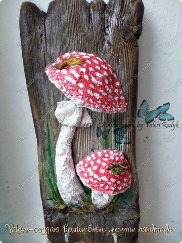 Дорогие ДРУЗЬЯ, всем огромный привет!!! Наконец то и я добралась до браша-ура!!! Давно задумала создать ключницы с объёмными грибочки(и не только грибочками-но это пока в планах) на брашированных досочках и вот мои мечты воплотились в реальность!  фото 7
