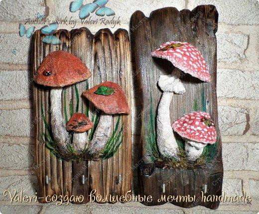 Дорогие ДРУЗЬЯ, всем огромный привет!!! Наконец то и я добралась до браша-ура!!! Давно задумала создать ключницы с объёмными грибочки(и не только грибочками-но это пока в планах) на брашированных досочках и вот мои мечты воплотились в реальность!  фото 2